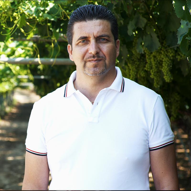 """Il successo dei vini Crifo? L'enologo Tripaldi: """"Il lavoro di squadra e vinificare i migliori vitigni di Puglia"""""""