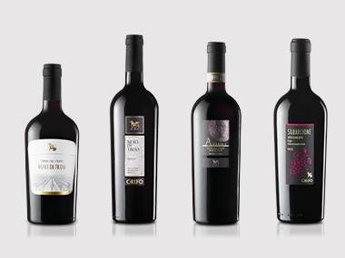 Il vino da uve Nero di Troia. Gradazione e caratteristiche